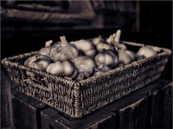 Copper Toned Garlic