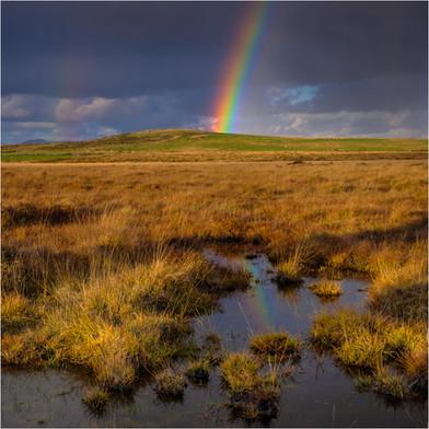 Bodmin Moor Rainbow