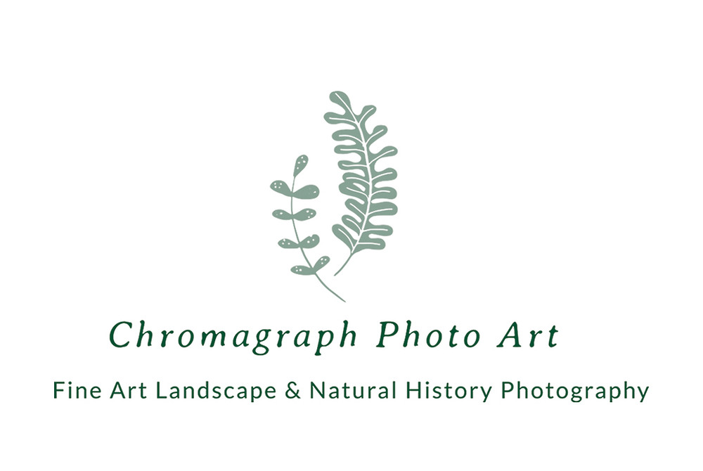 Chromagraph PhotoArt Business Card Front