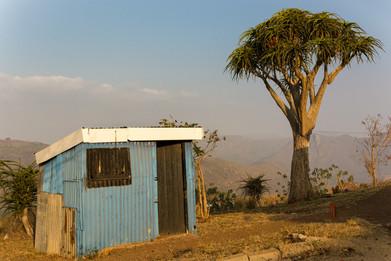 Zulu Camp.jpg