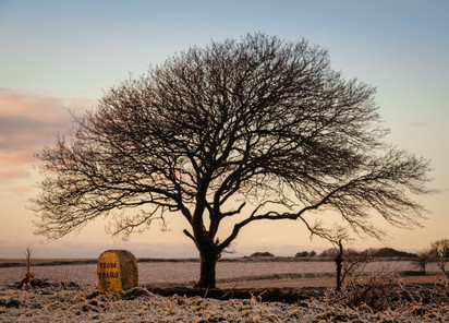 Snowy Day Near Probus