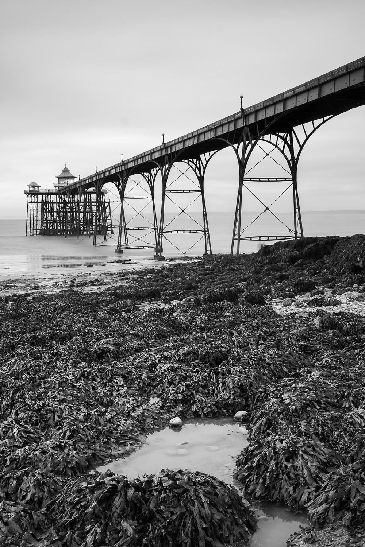 Vertical composition of Clevedon Pier