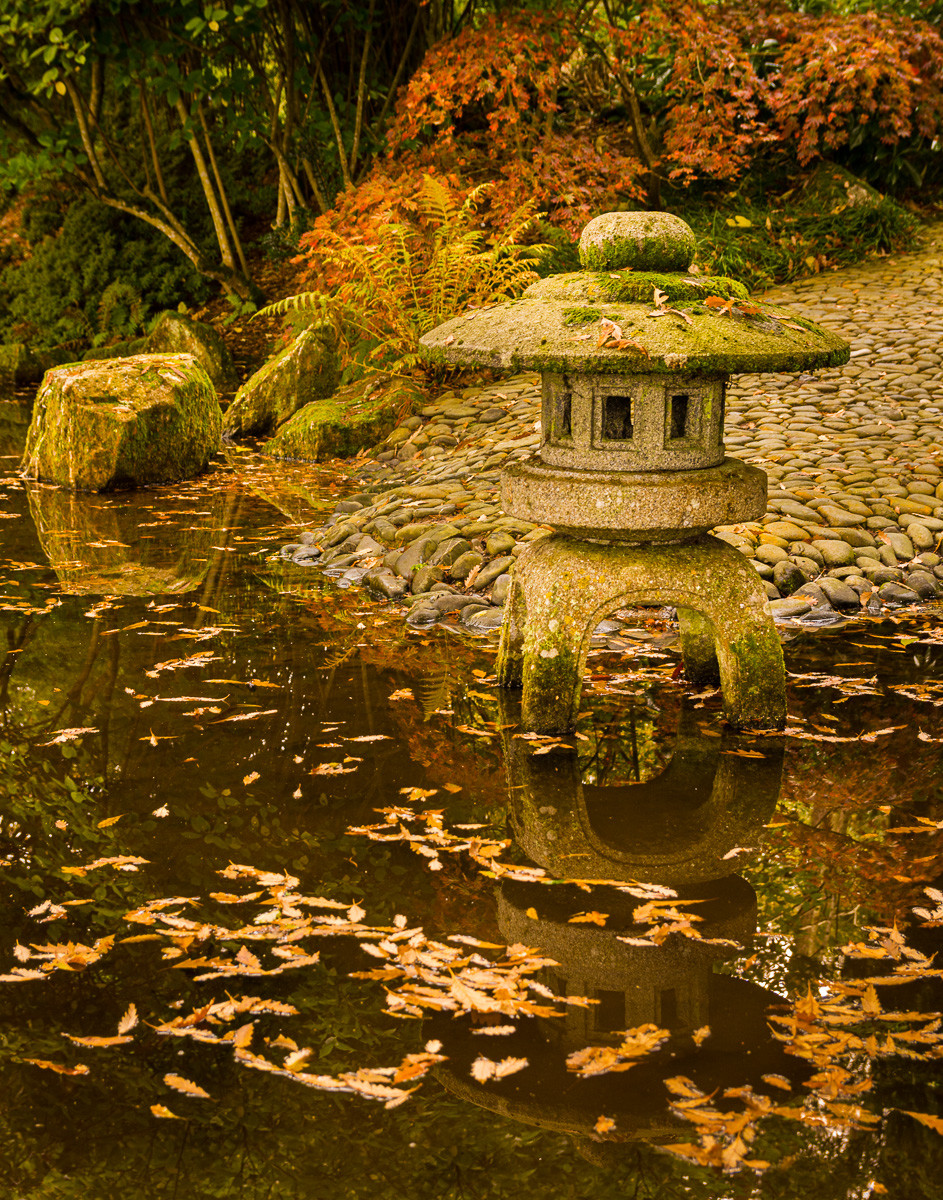 Pond with floating leaves and a stone Lantern in the water with a cobbled road beyond