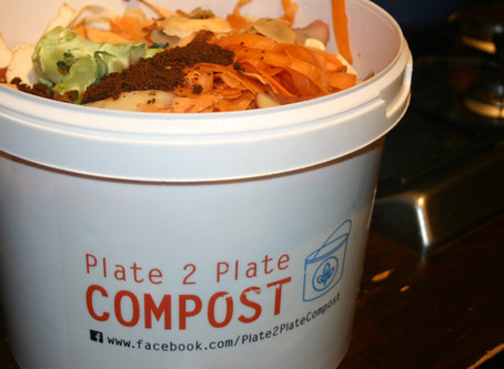 Domestic Food Waste Collections