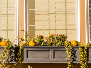 Fall Decorating Ideas That'll Spice Up Your Home for Autumn 🍂