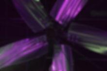 Website Closeup 4.JPG