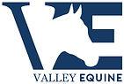 VE logo.jpg