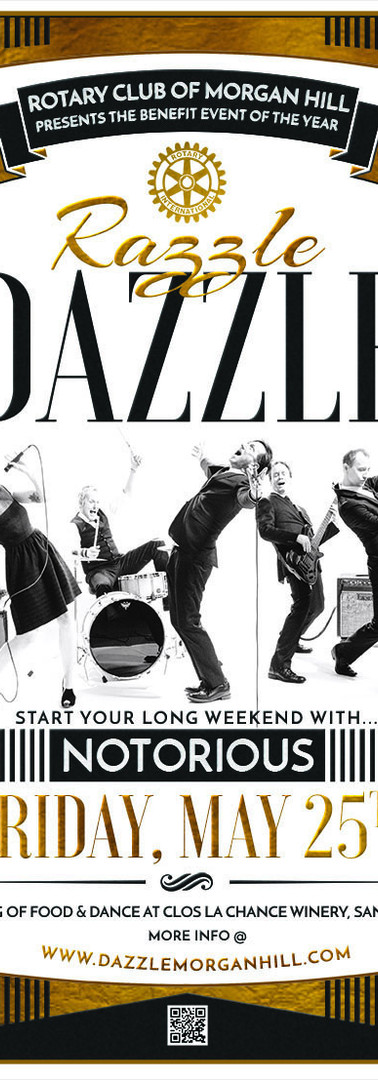 dazzle poster final web.jpg