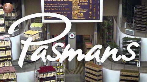 Commercial for Pasmans Flower Shop