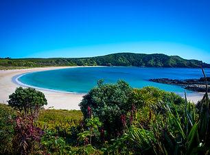 Maitai-Bay-Karikari-Peninsular.jpg