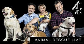 Animal Rescue Live