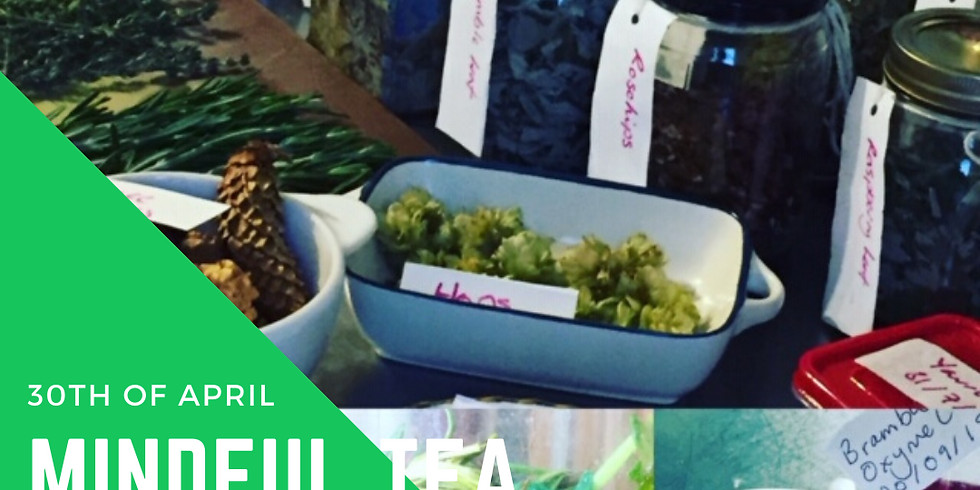 Mindful Tea Blending & Tasting by The Little Foragers Kitchen