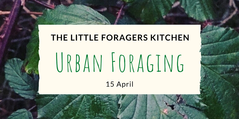 Urban Foraging - The Little Foragers Kitchen