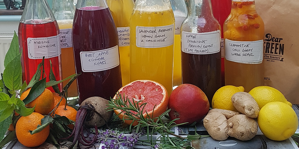 Taste of Fermentation by Nourished by Nature (2)
