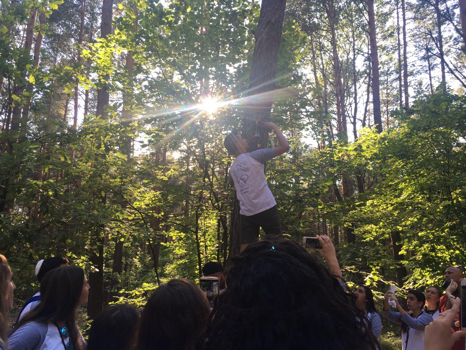 יער לופוחובה (3)