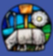 sheep b.jpg