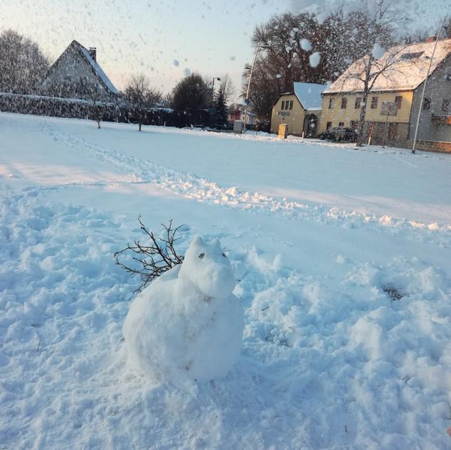 Schneetiere.jpg