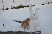 Skulpturen im Schnee - Kunstprojekt in den 1. und 2. Klassen