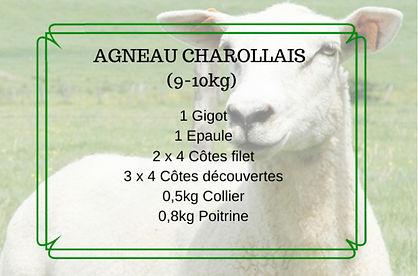 Agneau offre classic 2020