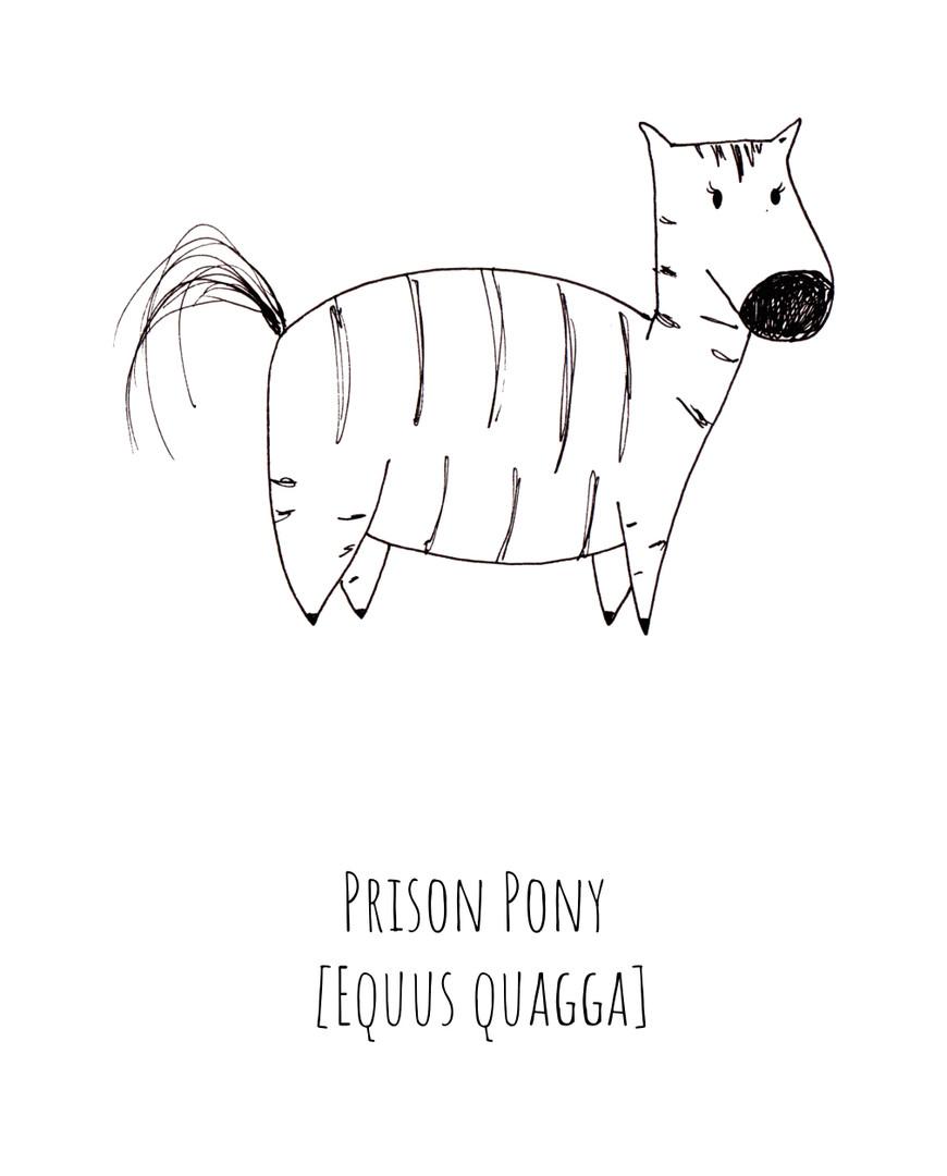 Prison Pony