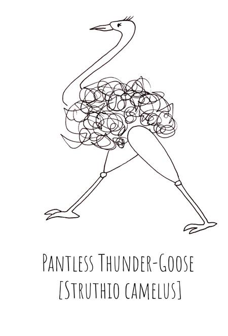 Pantless Thunder-Goose