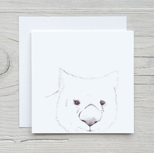 Wombat_Square.jpg