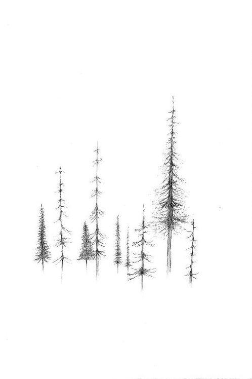 Digital Print - Korppoo Forest