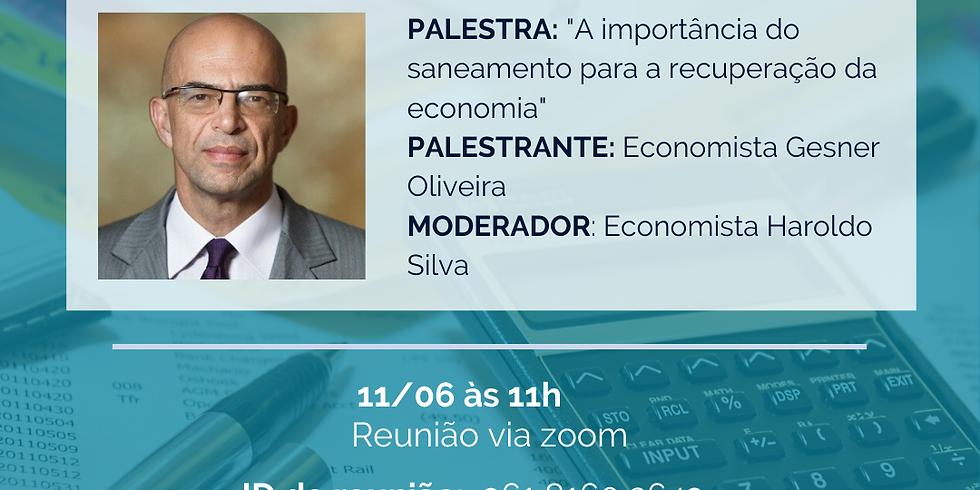 """palestra online: """"A importância do saneamento para a recuperação da economia"""""""
