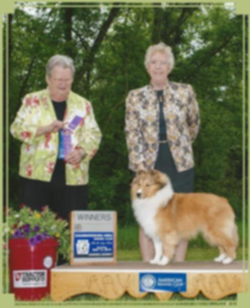 Jana Life Of Riley - Winners Dog - Chambersburg Area KC