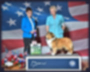 Jana Life of Riley Winners Dog Greater Clarksburg WV KC