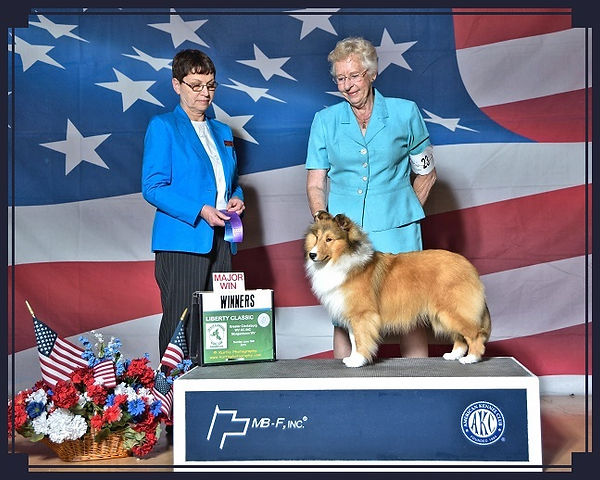 Jana Life of Riley Winners Dog Greater Clarksburg WV KC