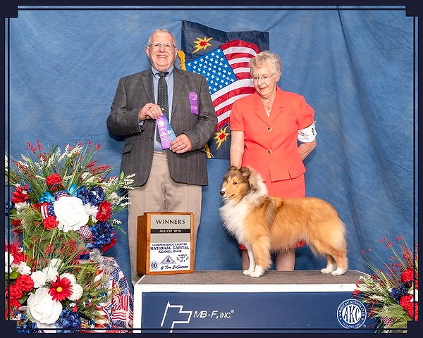 Jana Life of Riley Winners Dog National Capital Kennel Club