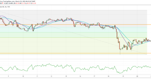 USOIL Recovers From Daily Support