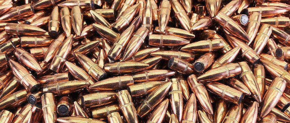 .223 55 Grain Range Ammunition 100 Rds
