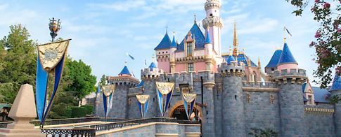 Disneyland-wide