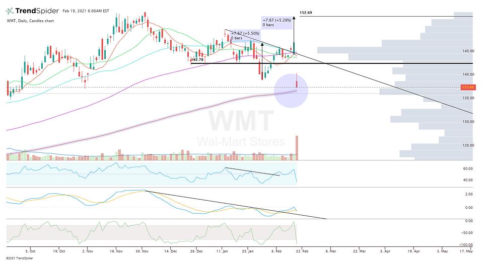 WMT-19_Feb_2021_06_06.png