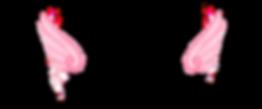 955D90B2-5D2E-4F0B-B925-95575F2287A8.png