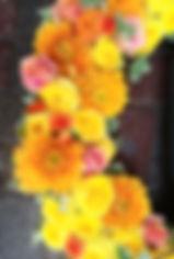20190109_114642_edited.jpg