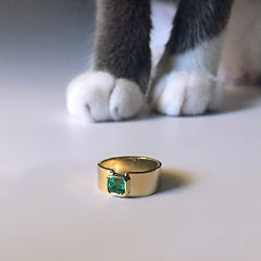 Emerald ring with boris.jpg