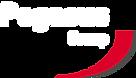 Pegasus Group Logo White.png
