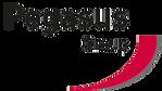 Pegasus Group Logo.png