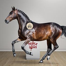 Race-Horse.jpg