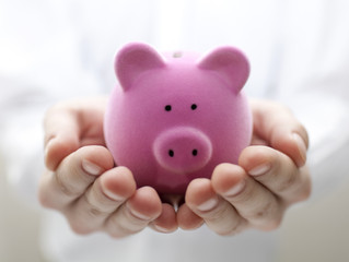 Four ways that a good HR Consultant can save you money!