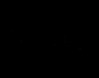 signatureunderline2019 blacklarge.png