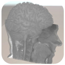 Brain mapping EEG.png