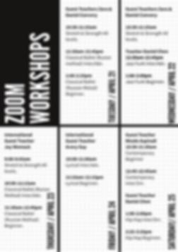 copy of zoom workshop (1).png