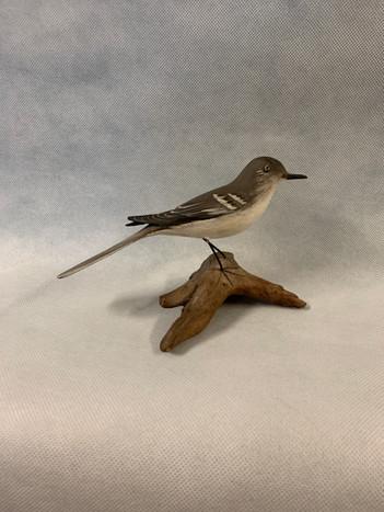Life-Size Mockingbird