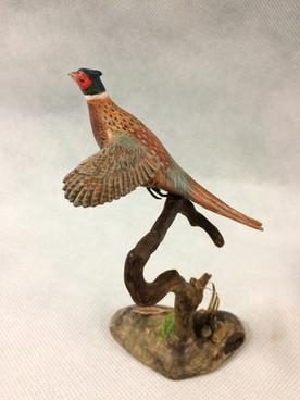 Miniature Pheasant