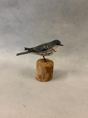 Life-Size Cerulean Warbler