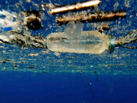 EU bans single-use plastic